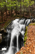 Cascading Water Prints - Spring at Enders Print by Bill  Wakeley
