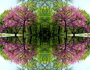 Red Bud Trees Posters - Spring Poster by Dale   Ford