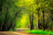 Green Color Art - Spring Feelings by Stefan Kuhn