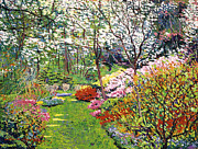 Spring Forest Vision Print by David Lloyd Glover