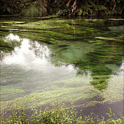 Green Color Art - Spring water by Les Cunliffe