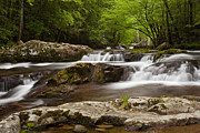 Smoky Mountains Posters - Springtime Cascades Poster by Andrew Soundarajan