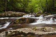 Andrew Soundarajan - Springtime Cascades