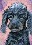 Poodle Paintings - Spunky Gray Poodle by Eve  Wheeler