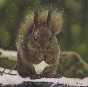 British Pastels - Squirrel Nutkin by Karie-ann Cooper