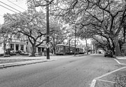 Tram Framed Prints - St. Charles Ave. monochrome Framed Print by Steve Harrington