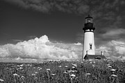 White Lighthouse.light Framed Prints - Standing Tall Framed Print by Andrew Soundarajan