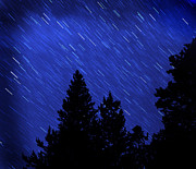 Star Trails In Night Sky Print by Lane Erickson