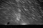 Startrail Photos - Startrail in Alentejo by Andre Goncalves