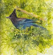 Stellar Jay Print by Ruth Glenn Little