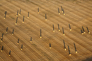 Agronomy Photos - Straw Bales, Chenevelles by Laurent Salomon