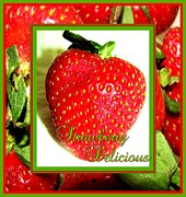 Strawberry Prints Framed Prints - Strawberry Delicious Framed Print by Margaret Newcomb