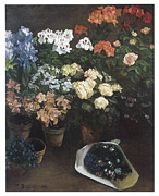 Flowerpots Framed Prints - Study of Flowers Framed Print by Frederic Bazille