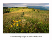 North Carolina Mountains Prints - Summer Morning Sunlight on Little Hump Mountain Print by Keith Clontz