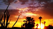 Chris Tarpening - Sunrise in Palm Springs