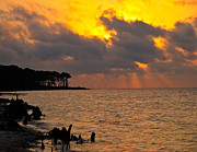 Apalachicola Bay Posters - Sunrise on the Bay Poster by Michael Blake