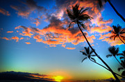 Coconut Palms Prints - Sunset Palms Print by Kelly Wade