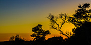 Dickenson Prints - Sunset Silhouette Print by Debra and Dave Vanderlaan
