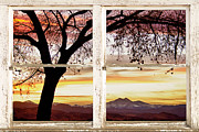 Commercial Space Art Framed Prints - Sunset Tree Silhouette Abstract Picture Window View Framed Print by James Bo Insogna