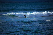 Wetsuit Prints - Surfer at Porthleven Cornwall Print by Louise Heusinkveld