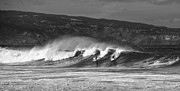Jamie Pham - Surfing Duel
