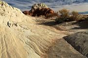 Adam Jewell - Surreal Landscape
