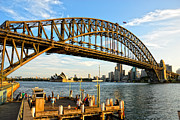 Iron Bridges Prints - Sydney Harbour Bridge arching gracefully over Sydney Harbour Print by David Hill
