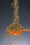 Kitchen Photos - 1 Tablespoon Oregano by Steve Gadomski