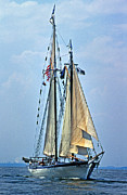 Ocean Images Posters - Tall Ship Harvey Gamage Poster by Skip Willits