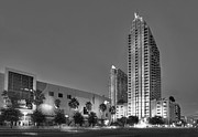 Condo Prints - Tampa Skyline Print by Marvin Spates