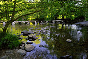 Stepping Stones Prints - Tarr Steps  Print by Rob Hawkins
