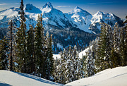 Tatoosh Winter Wonderland Print by Inge Johnsson
