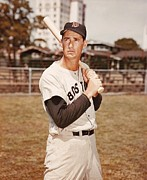 Ted Williams Photo Prints - Ted Williams Poster Print by Sanely Great