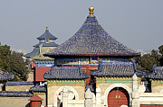 Brendan Reals - Temple of Heaven -...