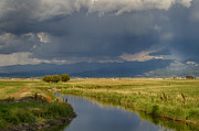 Rain Irrigation Posters - Teton Valley  Poster by Idaho Scenic Images Linda Lantzy
