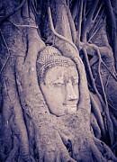 Spirituality Sculpture Metal Prints - The ancient city of Ayutthaya Metal Print by Thosaporn Wintachai