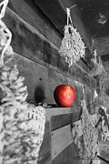 Log Cabin Photographs Acrylic Prints - The Apple Acrylic Print by Laurinda Bowling