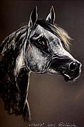 Grey Pastels Prints - The Arabian Horse Print by Angel  Tarantella