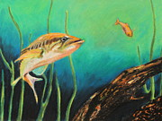 Fish Underwater Pastels - The Bass And The Minnow by Jeanne Fischer