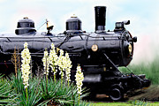 Bonnie Willis - The Black Steam Engine