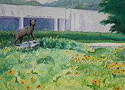 Wcu Prints - The Catamount Greeter Print by Sheena Kohlmeyer