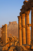 Palmyra Photos - The Colonnaded Street and the Arab Castle Palmyra by Robert Preston