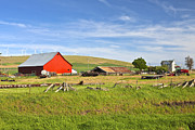 Old Shack Photos - The country farm Eastern Washington state. by Gino Rigucci