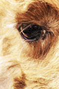 Llama Digital Art - The Eye of the Llama by David Allen Pierson
