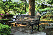 The Garden Bench Prints - The Garden Print by JC Findley