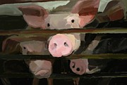 Pink Pigs Acrylic Prints - The Girls Acrylic Print by Patti Siehien