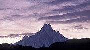 Great Outdoors Photos - The Himalayas by Anonymous