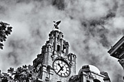 The Liver Building  Print by John Prince