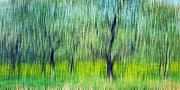 Harvest Art Prints - The Orchard Print by Darren Fisher