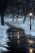 Central Park Winter Prints - The Path Print by JC Findley